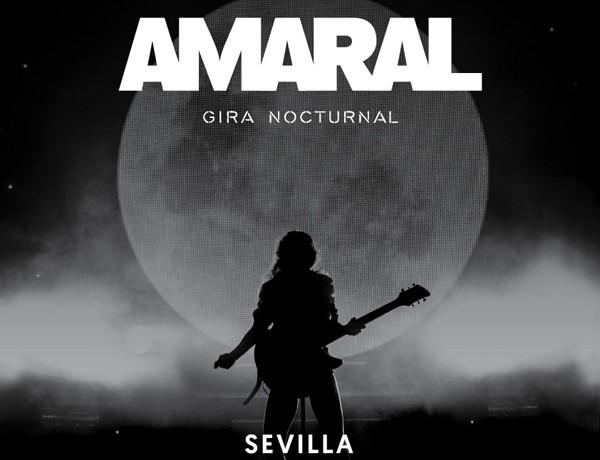 AMARAL WEB